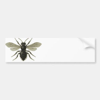 Queen Bee Yellow Black Save The Bees Car Bumper Sticker