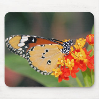 Queen Butterfly Mouse Pad