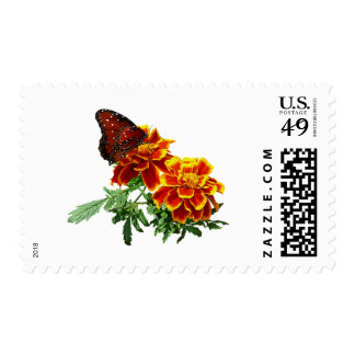 Queen Butterfly on Marigold Postage Stamps