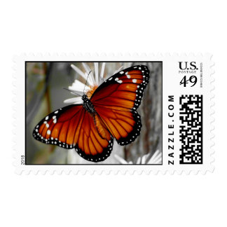 Queen Butterfly Stamp