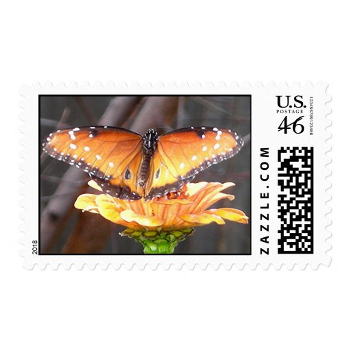 QUEEN BUTTERFLY postage