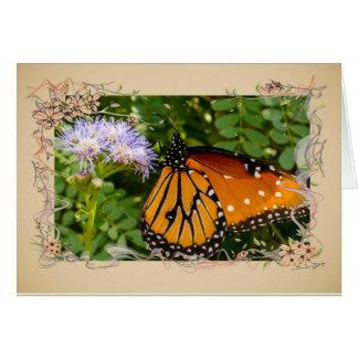 Queen Butterfly Scientific name: Danaus gilippus Card