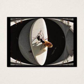 Queen Carpenter Ant ~ ATC Business Card