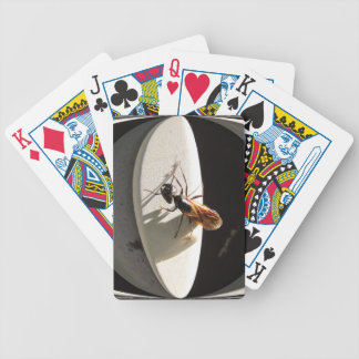 Queen Carpenter Ant ~ Playing Cards