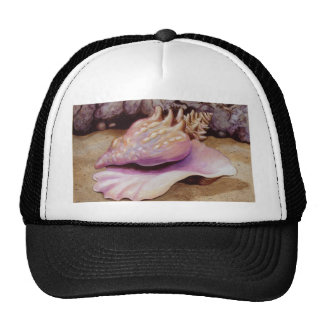 Queen Conch Sea Shell Art Trucker Hat