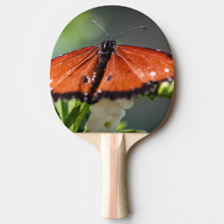 Queen Danaus Gilippus Ping Pong Paddle