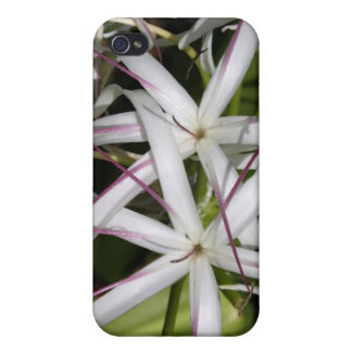 Queen Emma Lily iPhone 4 Case