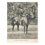 Queen of Belgium riding horse sidesaddle #053SS Postcard