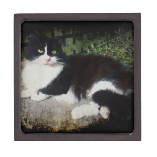 Queen of the Garden Cat Gift Box