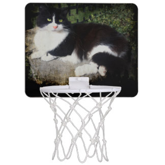 Queen of the Garden Cat Mini Basketball Hoop