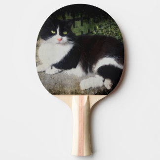 Queen of the Garden Cat Ping Pong Paddle
