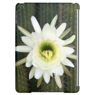 Queen Of The Night Cactus Flower, Karoo Region iPad Air Cover