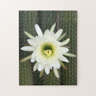 Queen Of The Night Cactus Flower, Karoo Region Jigsaw Puzzle