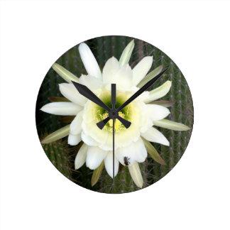 Queen Of The Night Cactus Flower, Karoo Region Round Clock