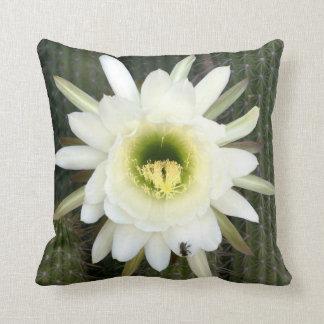 Queen Of The Night Cactus Flower, Karoo Region Throw Pillow