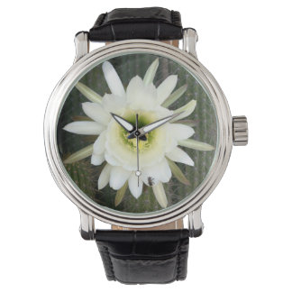 Queen Of The Night Cactus Flower, Karoo Region Wrist Watches
