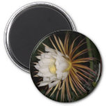 Queen Of The Night Cactus Flower Refrigerator Magnets