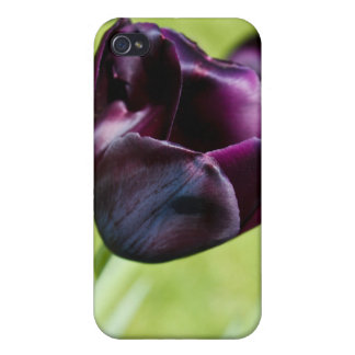 Queen of the Night Covers For iPhone 4