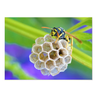 Queen Paper Wasp Tending to Her Nest Card