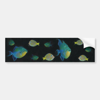 Queen Triggerfish bumper stickers