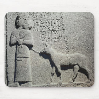Queen Tuwarissa, wife of King Araras Mouse Pad