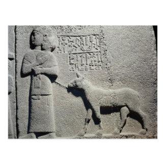 Queen Tuwarissa wife of King Araras Postcard