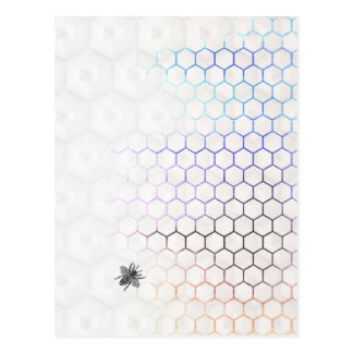 QueenBee in Colorfull HoneyComb Postcard
