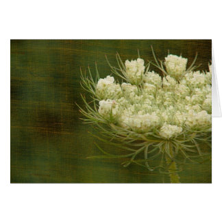 Queen's Anne Lace Card