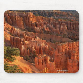 'Queen's Garden' hoodoos at sunrise. Bryce Mouse Pad