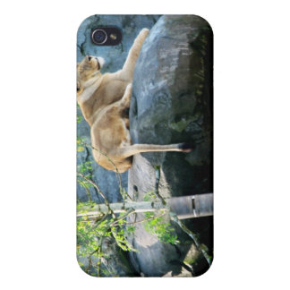 Queens Throne iPhone 4 Cover