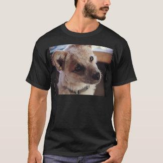 Queensland Heeler Pup Ringo T-Shirt