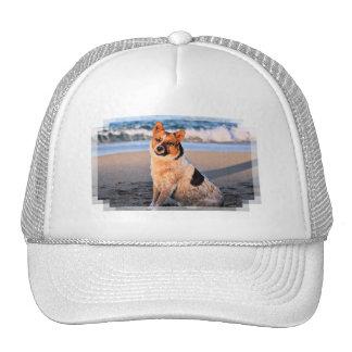 Queensland Red Heeler - Lucy Trucker Hats