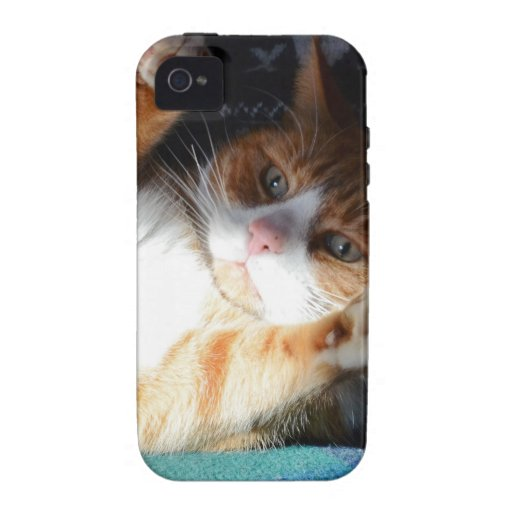 Quéjese me por favor calabaza Case-Mate iPhone 4 carcasa