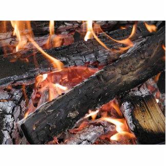 Quema de madera de las llamas de los fuegos escultura fotográfica