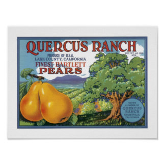 Quercus Ranch Bartlett Pears Poster