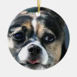 Querido del perrito ornamento para arbol de navidad