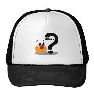 Query Trucker Hat