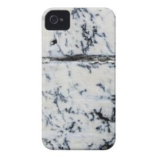 Queso de Queso Gorgonzola Carcasa Para iPhone 4