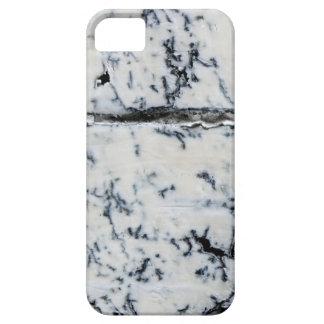 Queso de Queso Gorgonzola Funda Para iPhone SE/5/5s