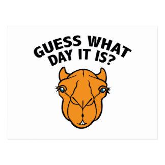 ¿Quess qué día es? Tarjetas Postales