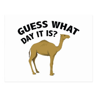 Quess What Day It Is? Postcard