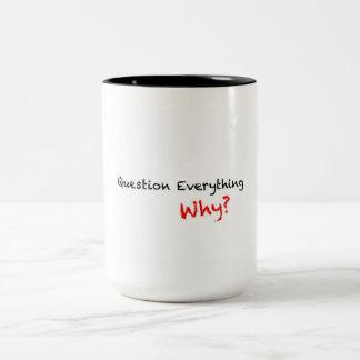 Question Everything Why? Mug