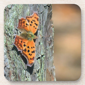 Question Mark Butterfly Beverage Coaster