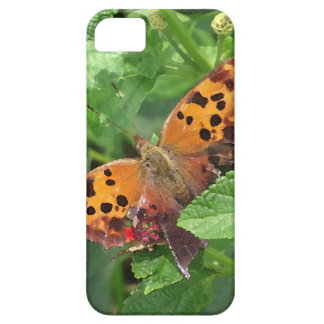 Question Mark Butterfly on Lantana iPhone SE/5/5s Case