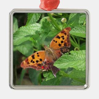 Question Mark Butterfly on Lantana Metal Ornament
