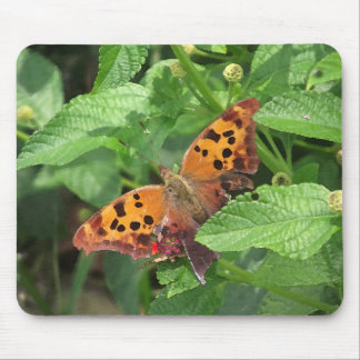 Question Mark Butterfly on Lantana Mouse Pad