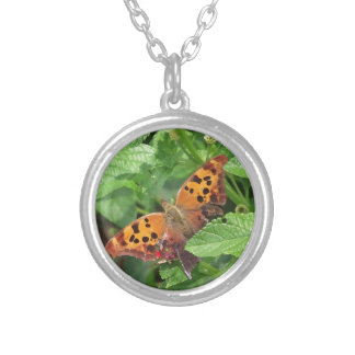 Question Mark Butterfly on Lantana Silver Plated Necklace