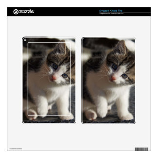 QUESTIONING KITTY KINDLE FIRE SKIN