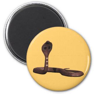 Queue Kobra snake cobra Refrigerator Magnet