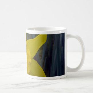 Quick Brown Fox Designs Coffee Mugs